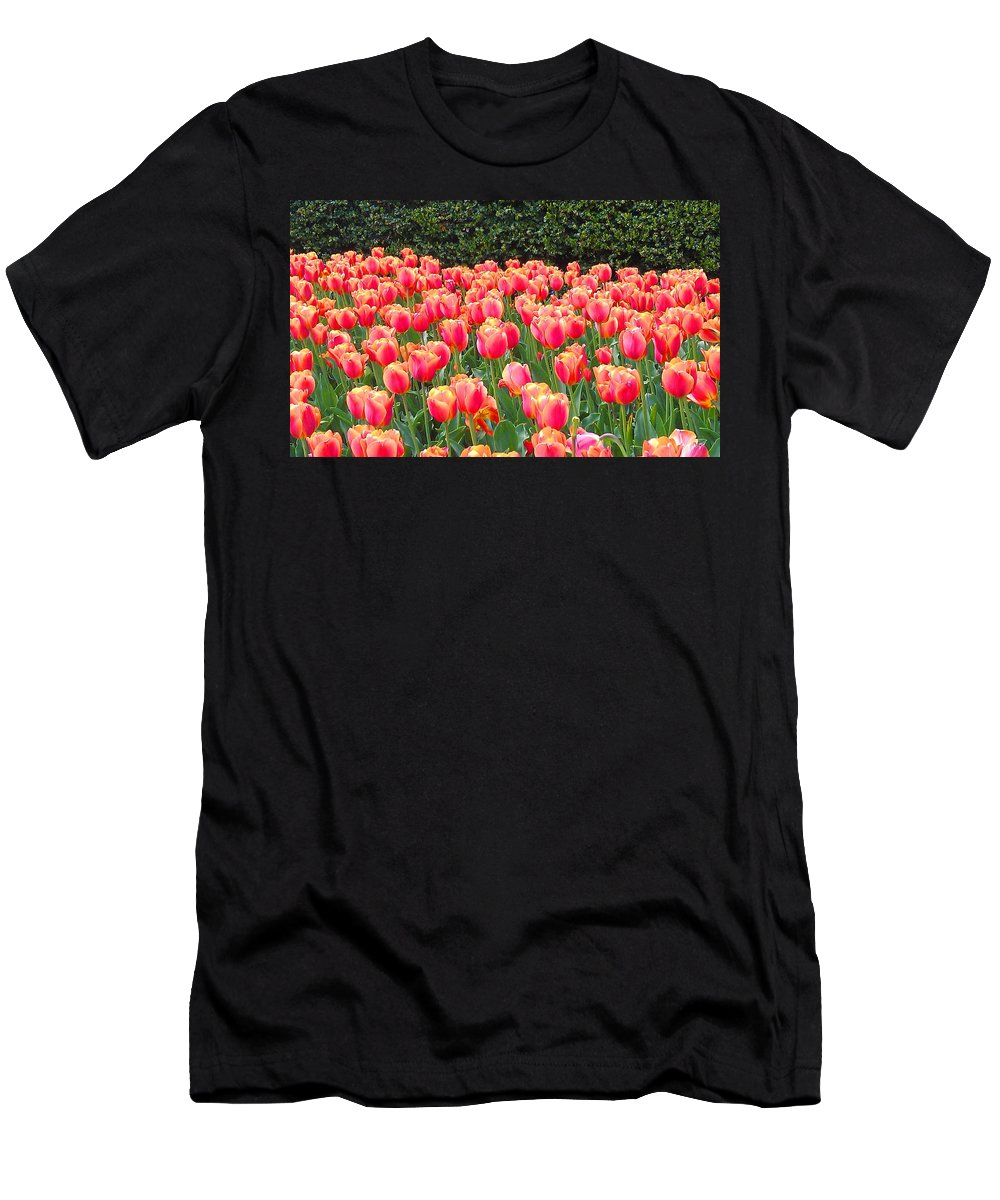 Tulips Men's T-Shirt (Athletic Fit) featuring the photograph The Tulips Are Coming by Trent Jackson
