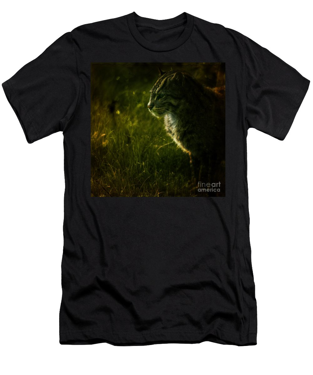 Zoo Men's T-Shirt (Athletic Fit) featuring the photograph The Wild Cat by Angel Ciesniarska