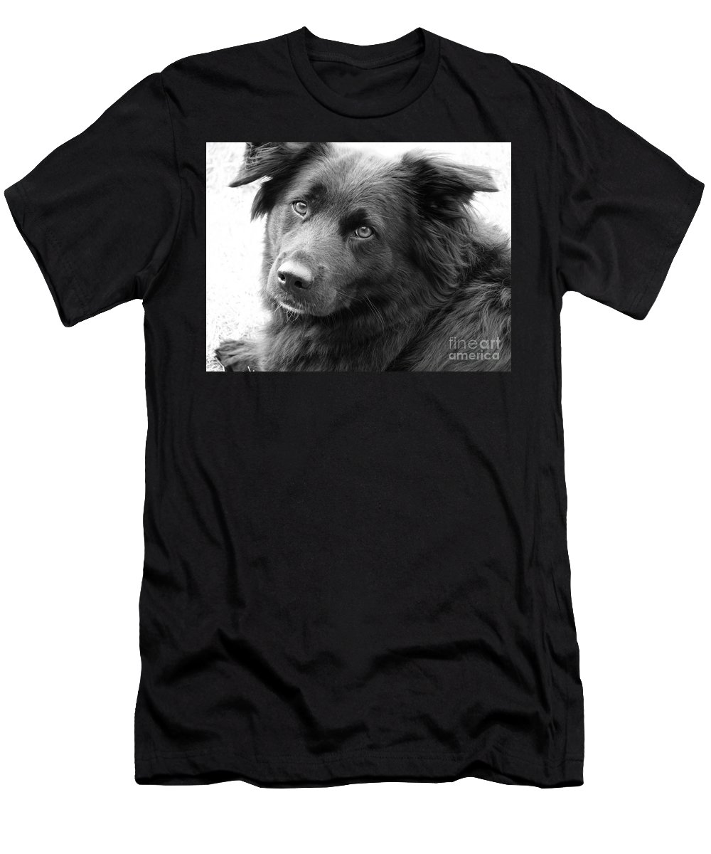 Dog Men's T-Shirt (Athletic Fit) featuring the photograph Thinking by Amanda Barcon
