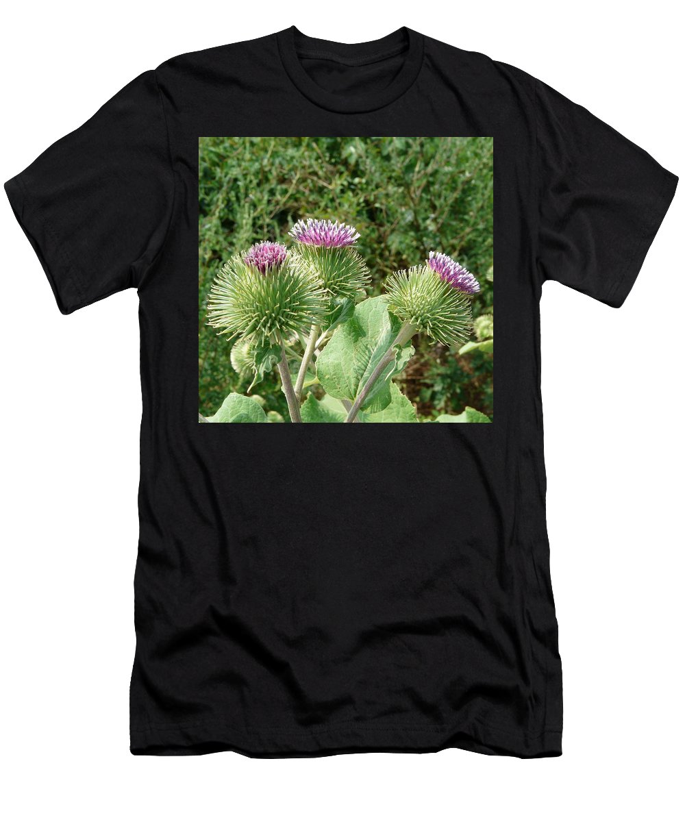 Burdock Men's T-Shirt (Athletic Fit) featuring the photograph Thistle Trinity by Valerie Ornstein