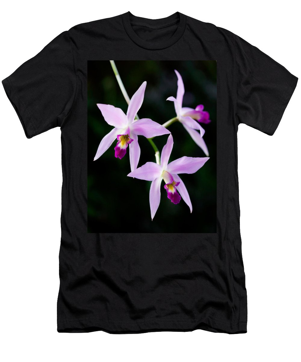 Orchid Men's T-Shirt (Athletic Fit) featuring the photograph Three Orchids by Marilyn Hunt
