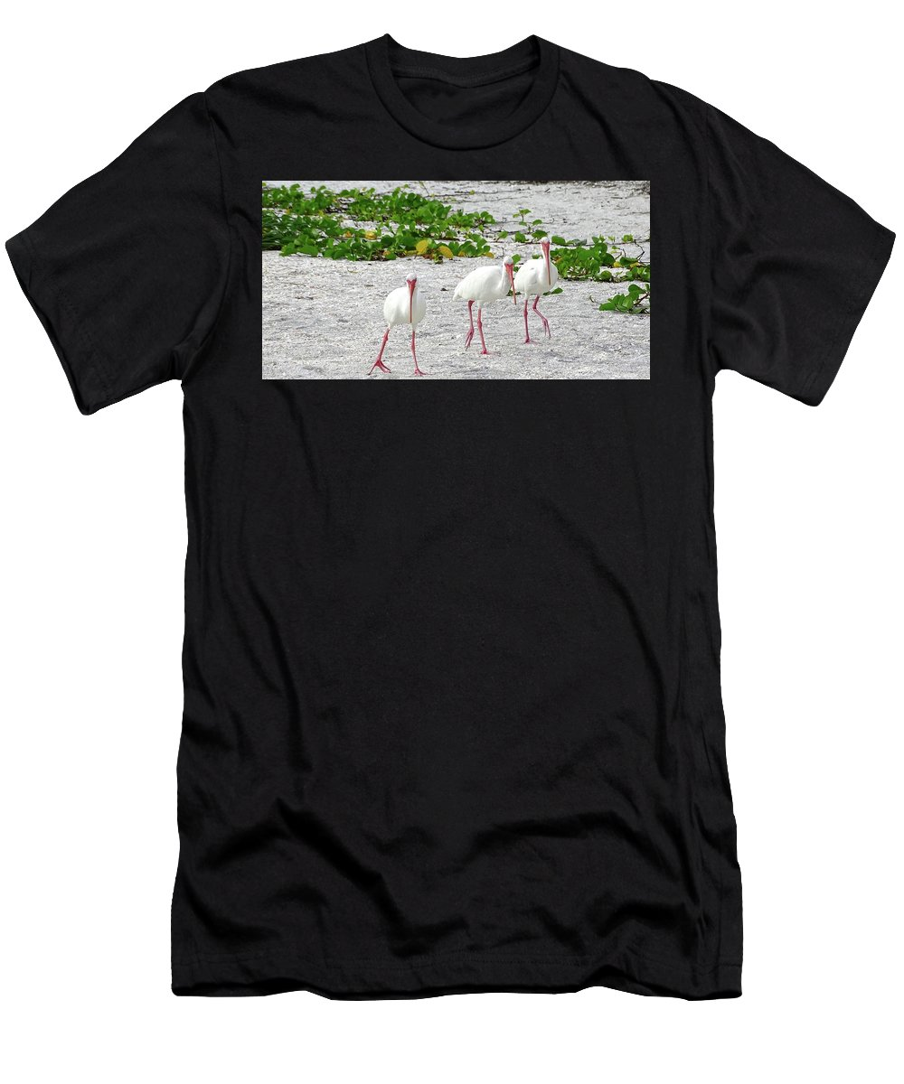 Three Men's T-Shirt (Athletic Fit) featuring the photograph Three White Ibis Walking On The Beach by Edit Szoke