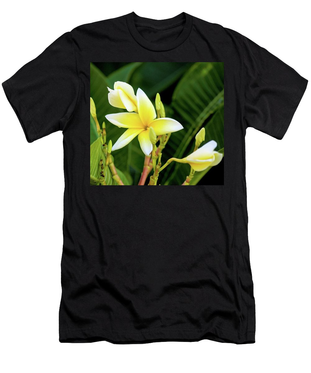Flora Men's T-Shirt (Athletic Fit) featuring the photograph Threes Company by Marshall Barth