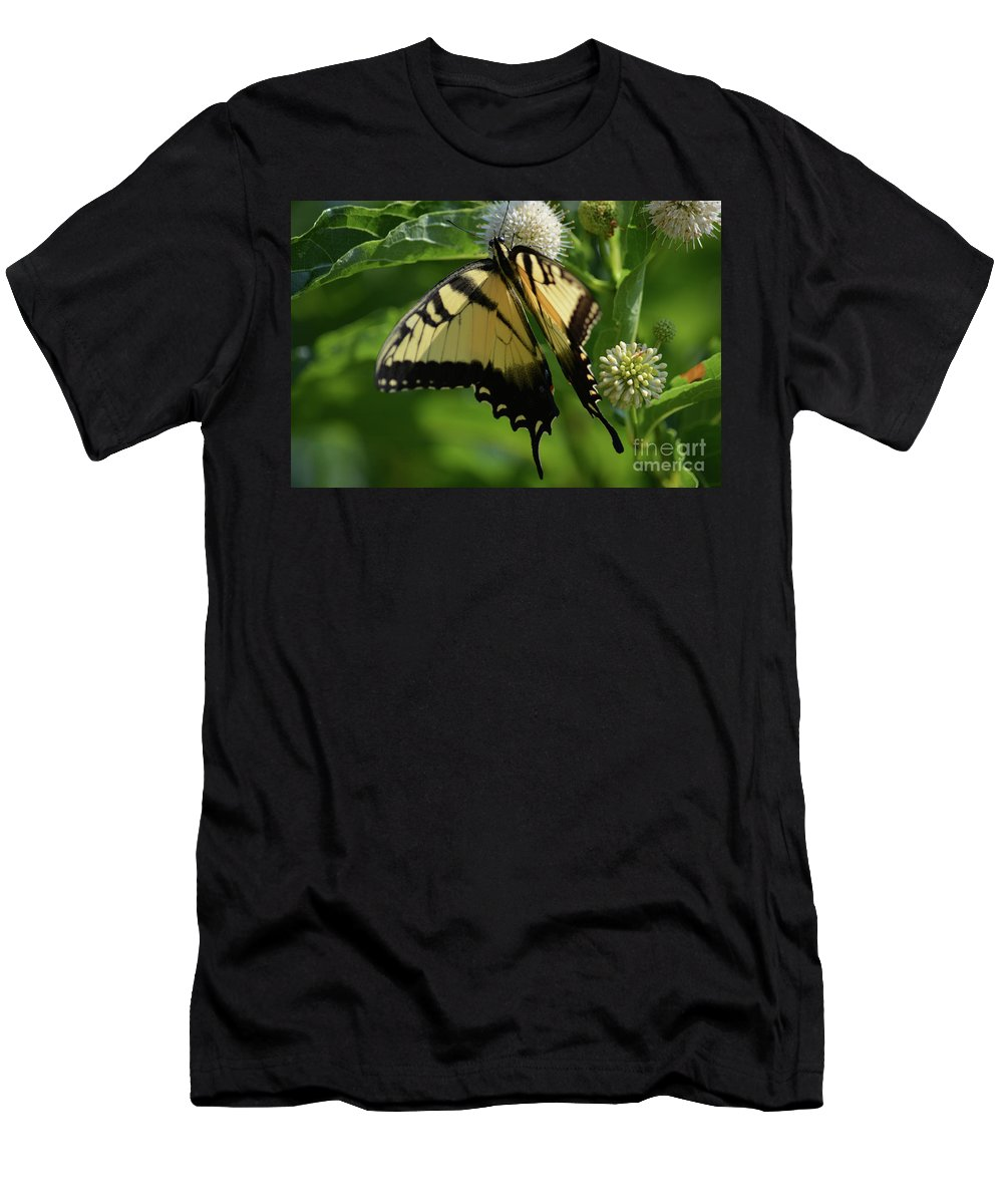 Tiger Swallowtail On Button Bush Prints Men's T-Shirt (Athletic Fit) featuring the photograph Tiger Swallowtail On Button Bush by Ruth Housley