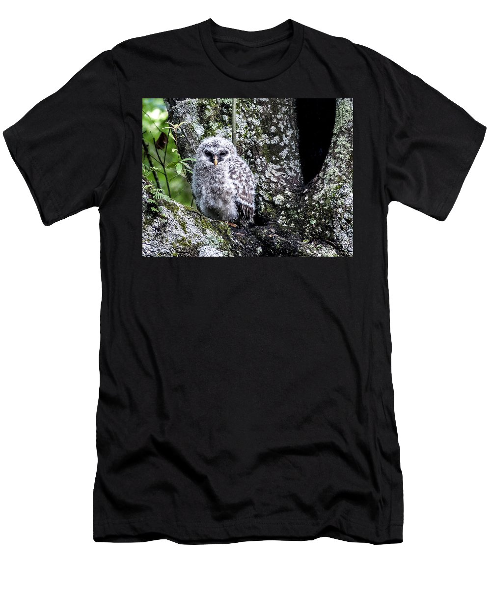 Barred Owl Men's T-Shirt (Athletic Fit) featuring the photograph Time To Leave by Norman Johnson