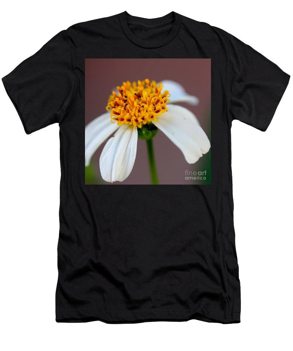 Ants Men's T-Shirt (Athletic Fit) featuring the photograph Tiny Ants In Tiny Flower by Mesa Teresita