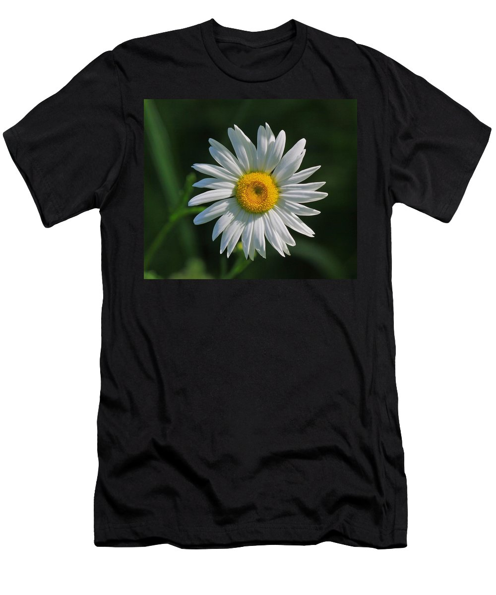 Related Tags: Flowers Artwork Men's T-Shirt (Athletic Fit) featuring the photograph Tiny Sunshine by Robert Pearson