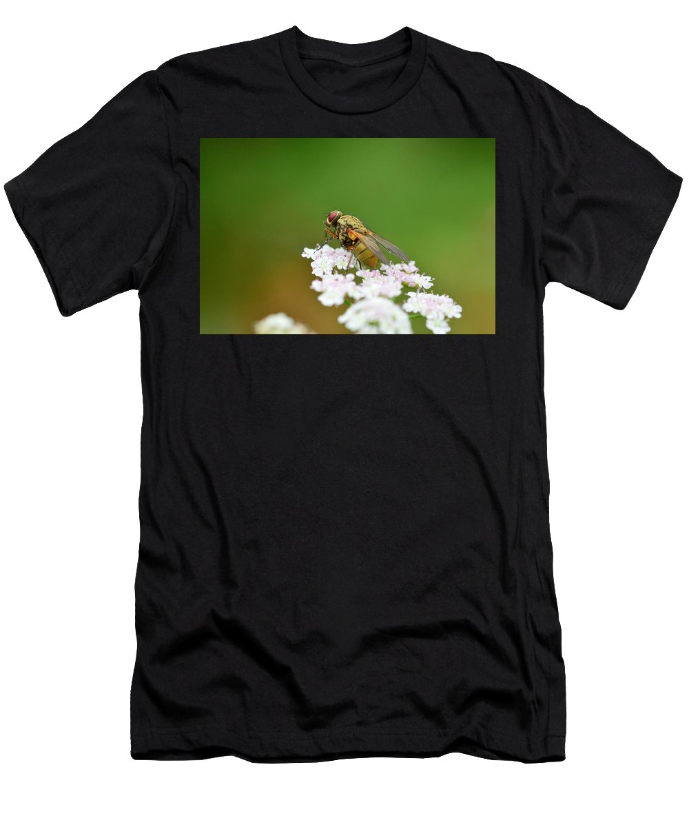Flies Men's T-Shirt (Athletic Fit) featuring the photograph Top Of The World by Stephen Jenkins