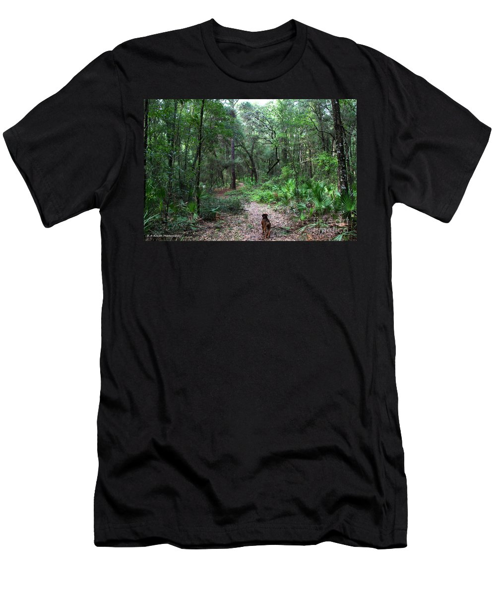 Hiking Men's T-Shirt (Athletic Fit) featuring the photograph Trail Angel by Barbara Bowen