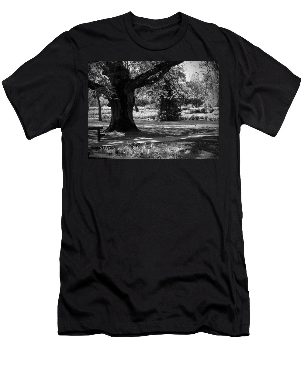 Irish Men's T-Shirt (Athletic Fit) featuring the photograph Tralee Town Park Ireland by Teresa Mucha