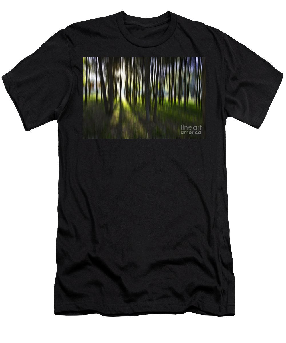 Trees Abstract Tree Lines Forest Wood Men's T-Shirt (Athletic Fit) featuring the photograph Tree Abstract by Avalon Fine Art Photography