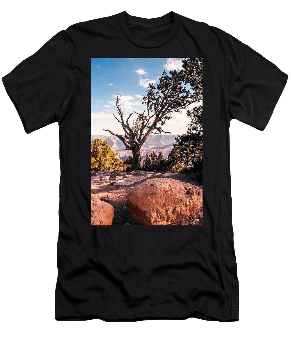 Grand Canyon Men's T-Shirt (Athletic Fit) featuring the photograph Tree At Moran Point by Mike Wheeler