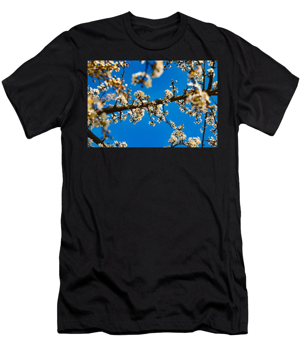 Tree Men's T-Shirt (Athletic Fit) featuring the photograph Tree Blossom On A Sunny Day In Spring by Alexander Beker