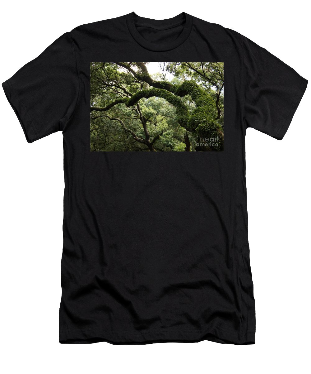 Tree Men's T-Shirt (Athletic Fit) featuring the photograph Tree Drama by Carol Groenen