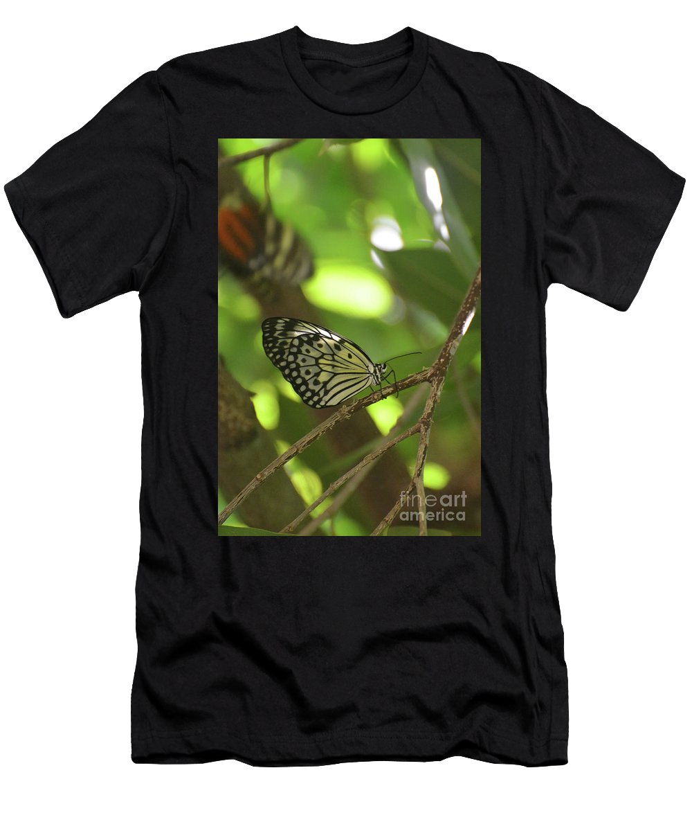Tree-nymph Men's T-Shirt (Athletic Fit) featuring the photograph Tree Nymph Butterfly Sitting On A Tree Branch by DejaVu Designs