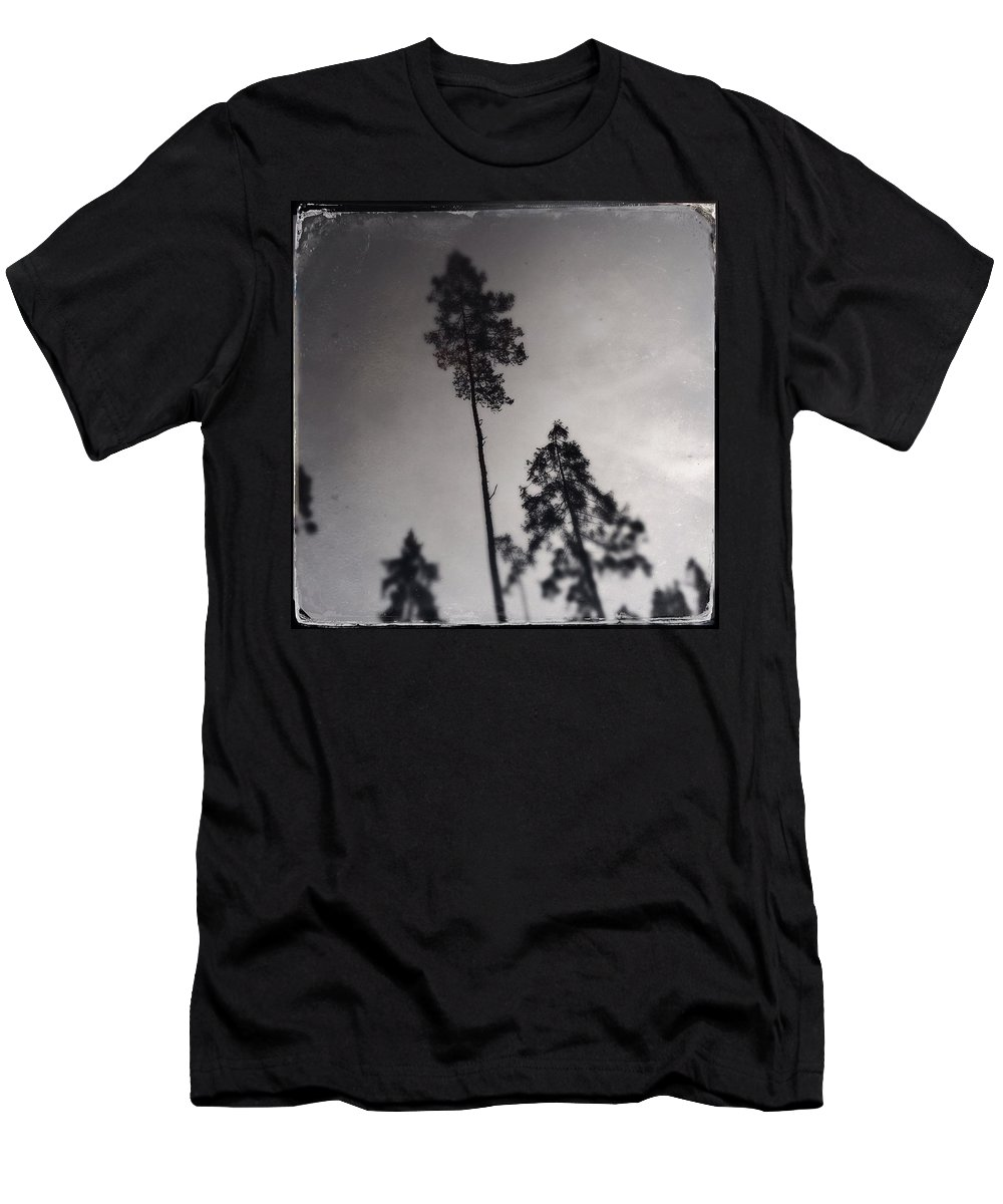 Tree T-Shirt featuring the photograph Trees Black And White Wetplate by Matthias Hauser