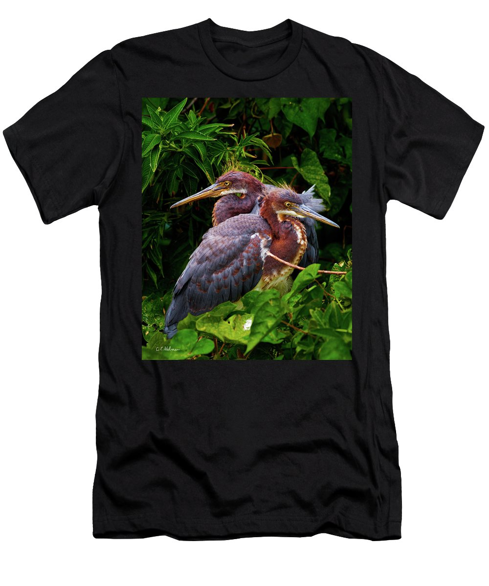 Birds Men's T-Shirt (Athletic Fit) featuring the photograph Tricolored Siblings by Christopher Holmes