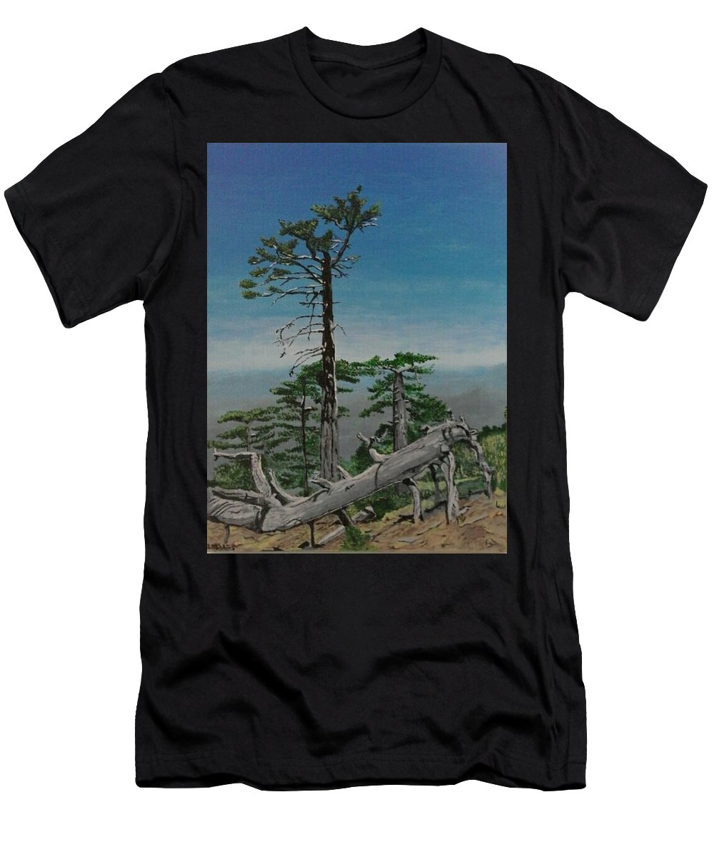 Troodos Mountains Men's T-Shirt (Athletic Fit) featuring the painting Troodos Mountain by Paul Gibbins