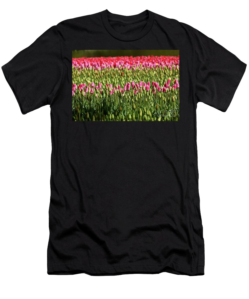 Tulip Men's T-Shirt (Athletic Fit) featuring the photograph Tulip-1 by Milind Ketkar