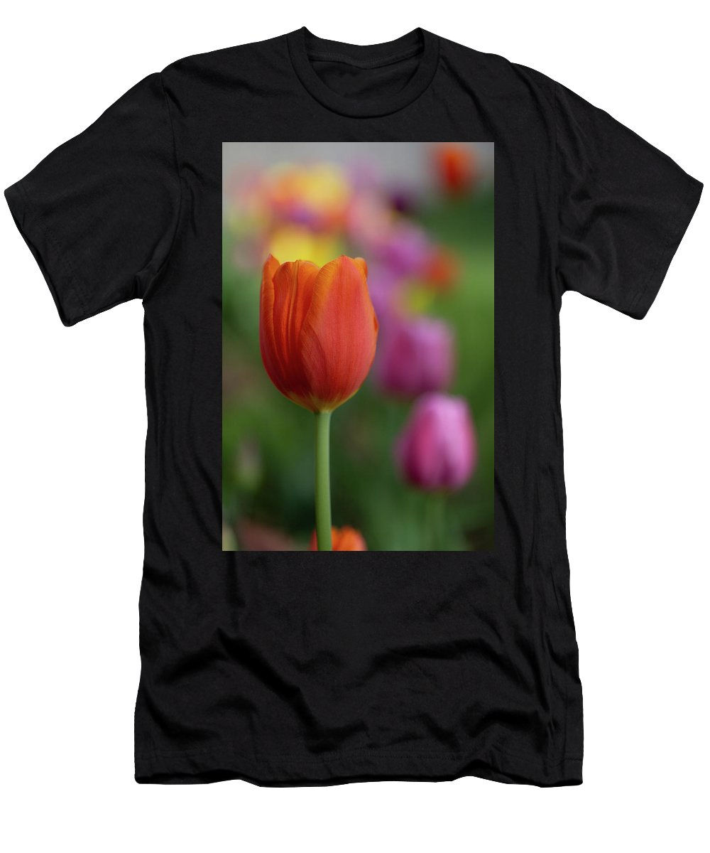 Flowers T-Shirt featuring the photograph Tulip In The Garden by Marie Leslie