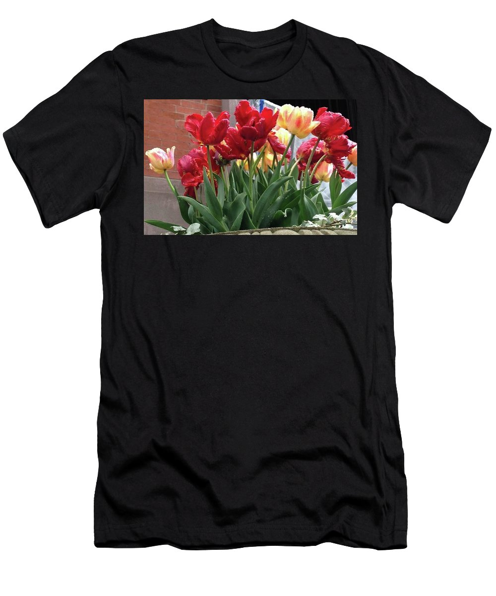 Tulip Palooza Men's T-Shirt (Athletic Fit) featuring the photograph Tulip Palooza by Carolyn Quinn