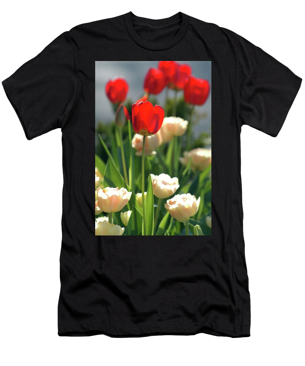 Tulip Men's T-Shirt (Athletic Fit) featuring the photograph Tulips by Alynne Landers