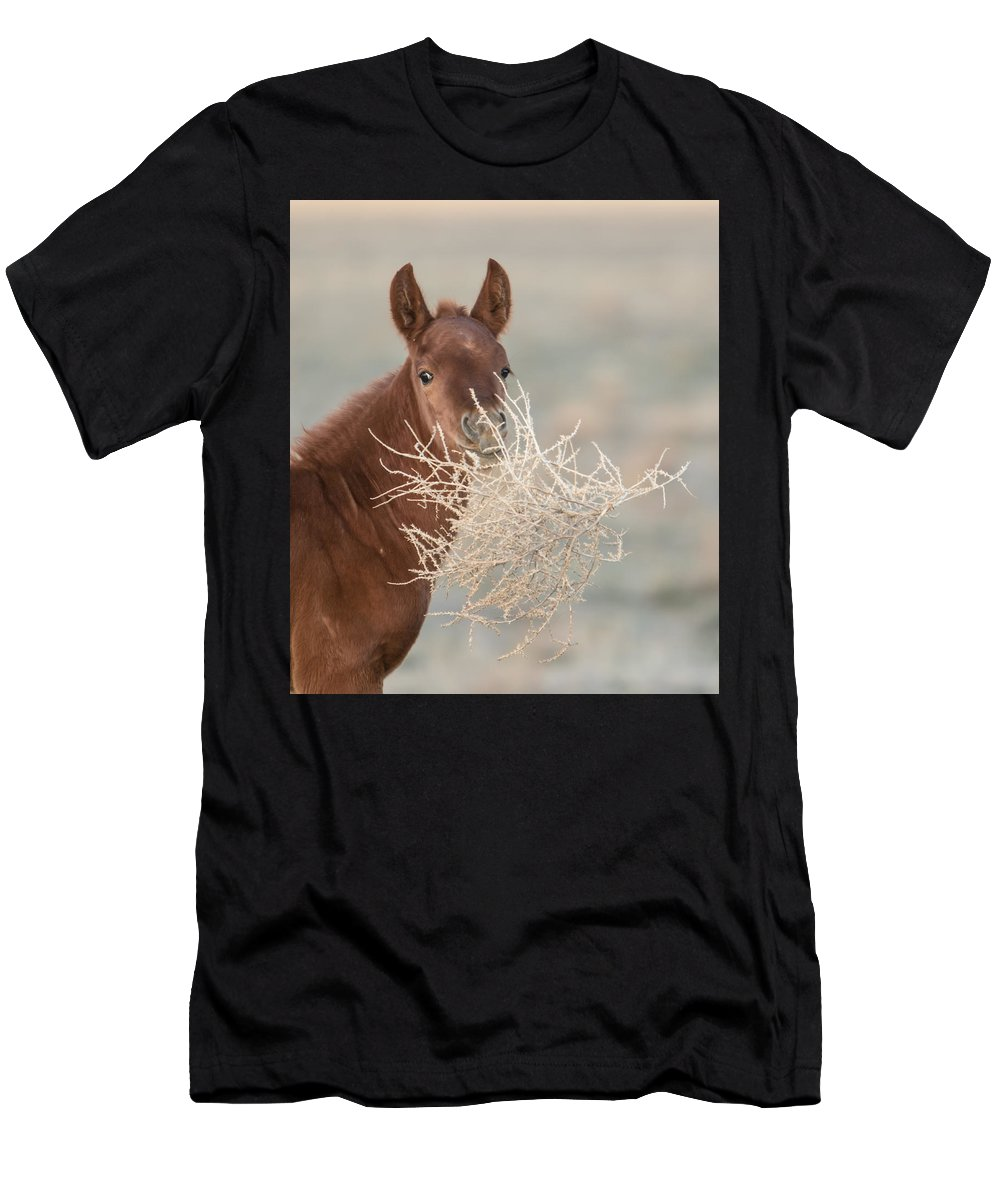 Horse Men's T-Shirt (Athletic Fit) featuring the photograph Tumbleweed by Kent Keller