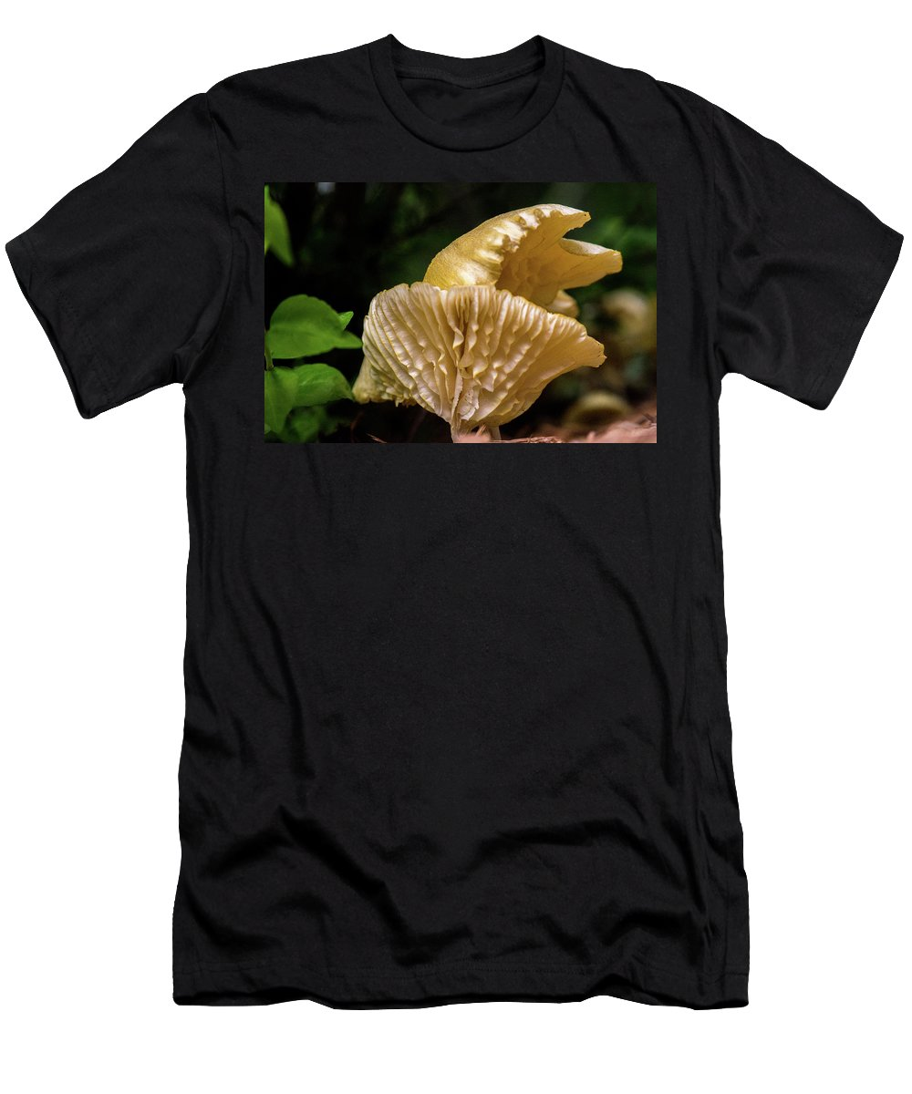 Cantharellus Men's T-Shirt (Athletic Fit) featuring the photograph Twin Cantharellus by Douglas Barnett