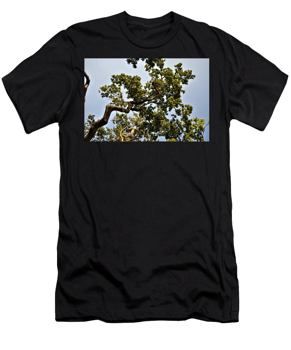 Twisted Men's T-Shirt (Athletic Fit) featuring the photograph Twisted by Sam Wells