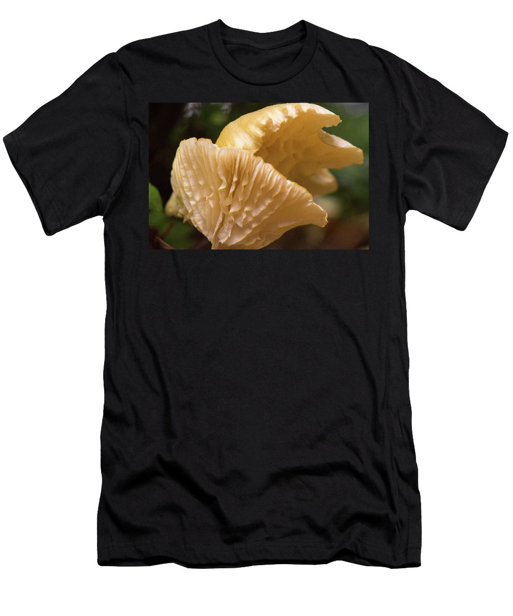 Cantharellus Men's T-Shirt (Athletic Fit) featuring the photograph Two Cantharellus by Douglas Barnett