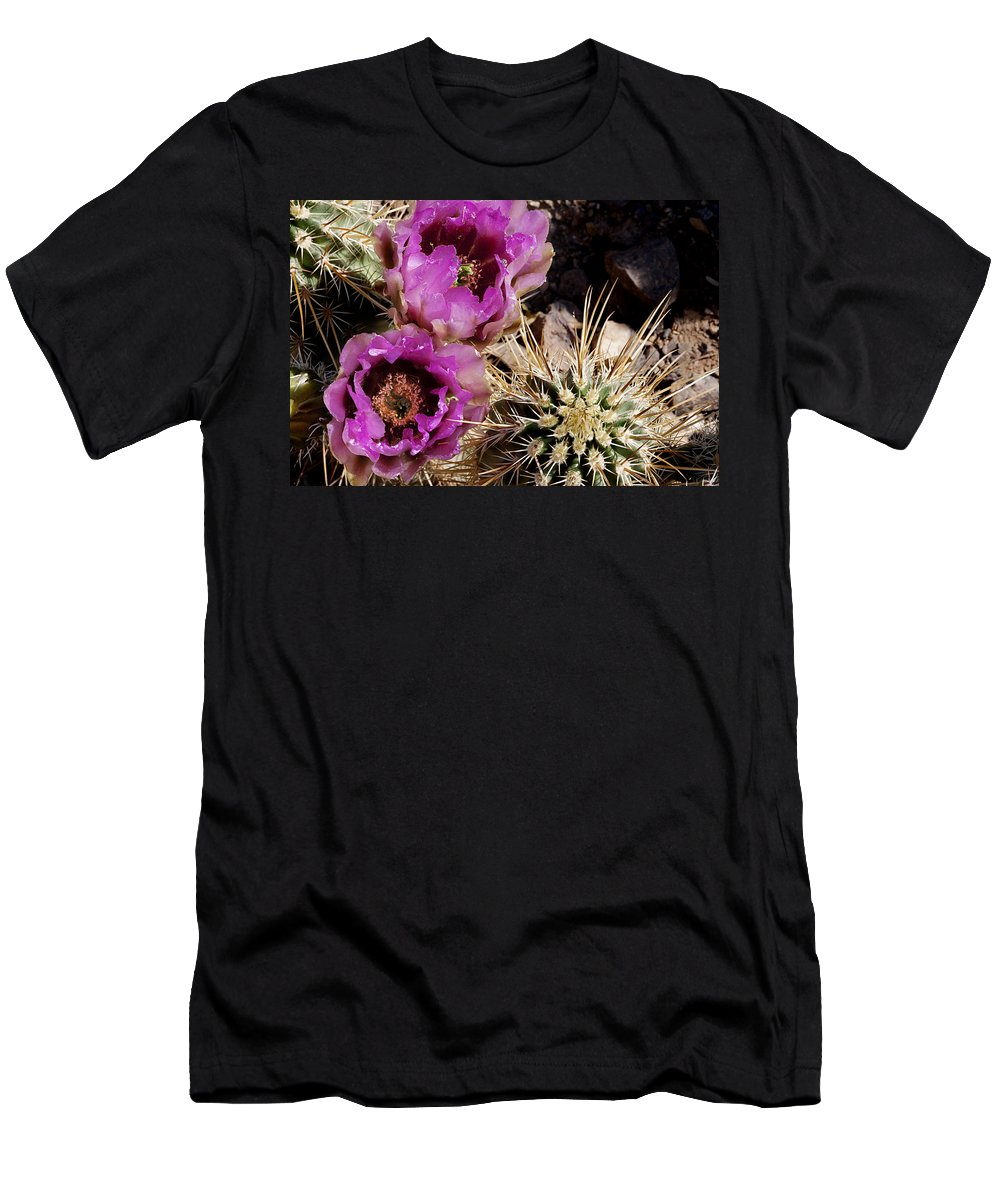 Cactus Men's T-Shirt (Athletic Fit) featuring the photograph Two Fucshia Blossoms by Phyllis Denton