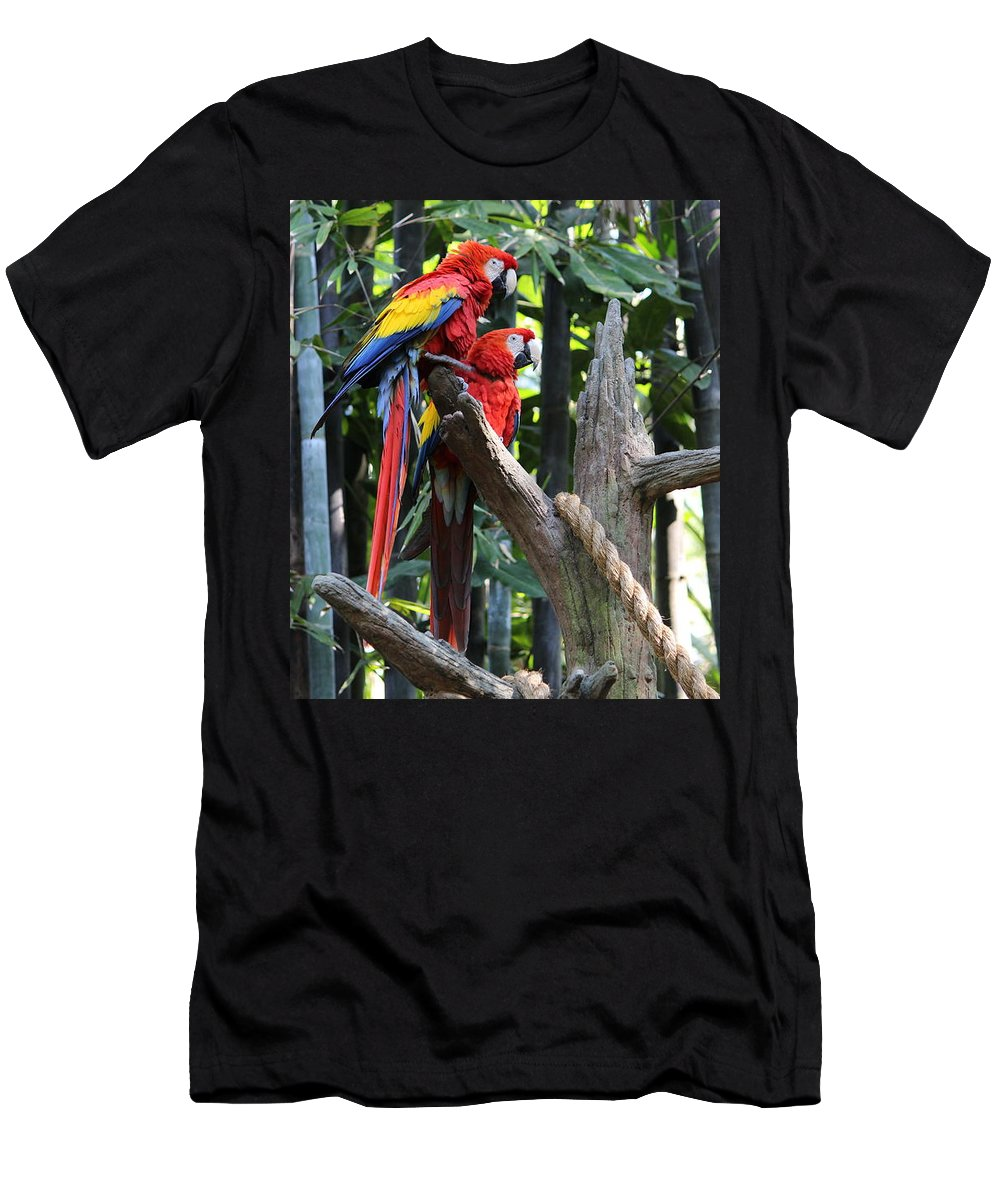 Parrot Men's T-Shirt (Athletic Fit) featuring the photograph Two Macaws by Sparrow TwoTheKnee