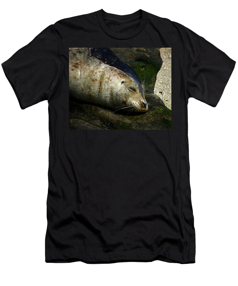 Seal Men's T-Shirt (Athletic Fit) featuring the photograph Two Tone Seal by Anthony Jones