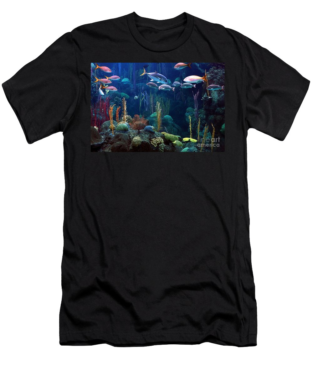 Fish Men's T-Shirt (Athletic Fit) featuring the photograph Under The Sea 3 by Randy Matthews
