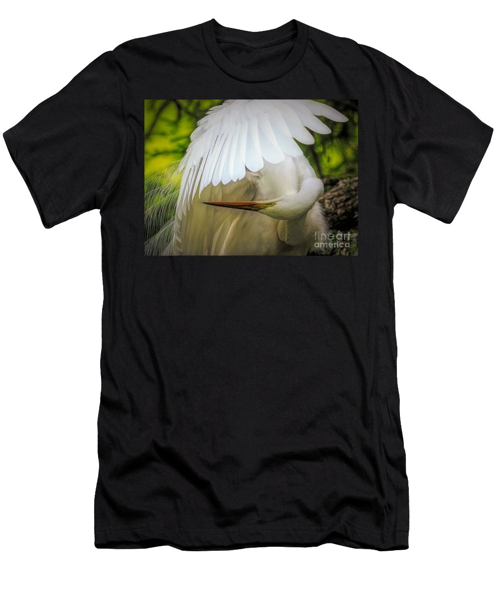 Great White Egret Men's T-Shirt (Athletic Fit) featuring the photograph Undercover by Paulette Thomas