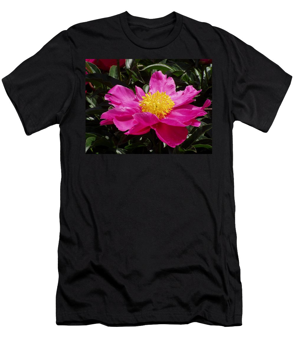 Rose Men's T-Shirt (Athletic Fit) featuring the photograph Unfolding by Ian MacDonald