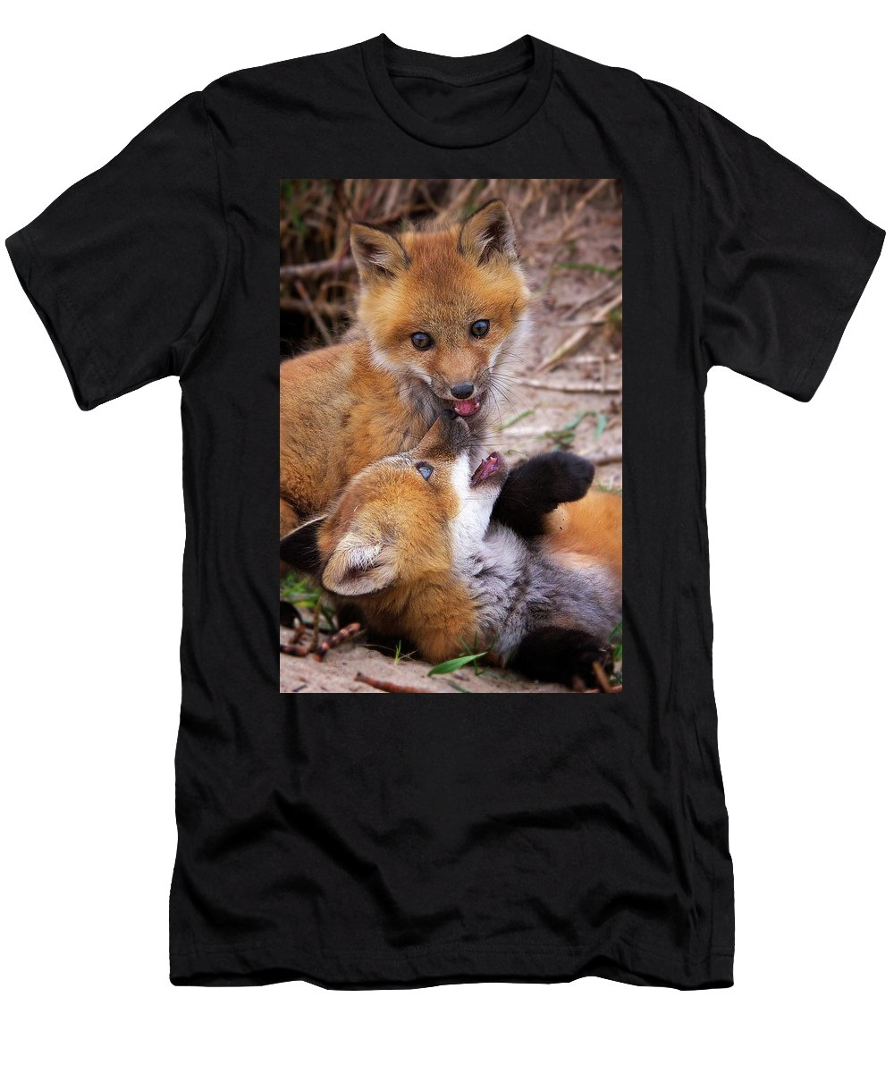 Red Fox Kit Men's T-Shirt (Athletic Fit) featuring the photograph Up To No Good... by Heather Quinn