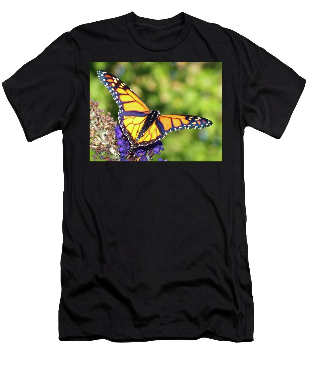 Monarch Men's T-Shirt (Athletic Fit) featuring the photograph V Shaped Monarch by Cindy Treger