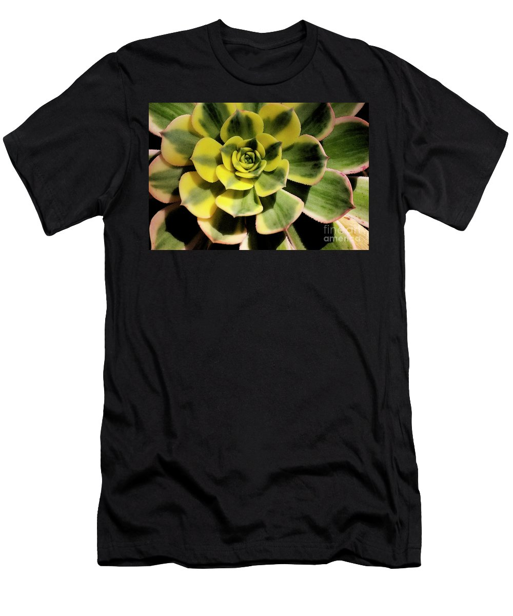 Variegated Men's T-Shirt (Athletic Fit) featuring the photograph Variegated Succulent by Jim And Emily Bush