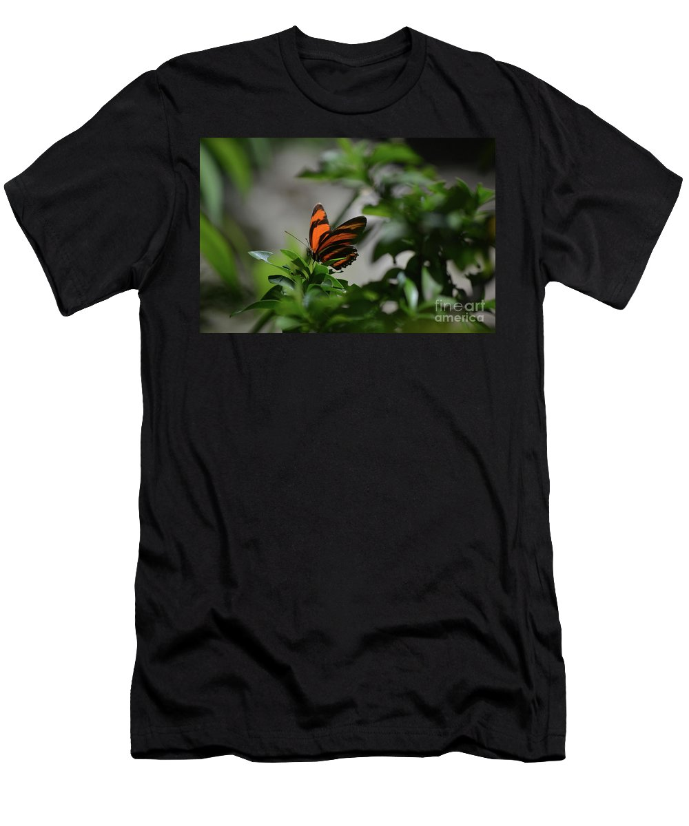 Butterfly Men's T-Shirt (Athletic Fit) featuring the photograph Vibrant Colors To A Orange Oak Tiger Butterfly by DejaVu Designs