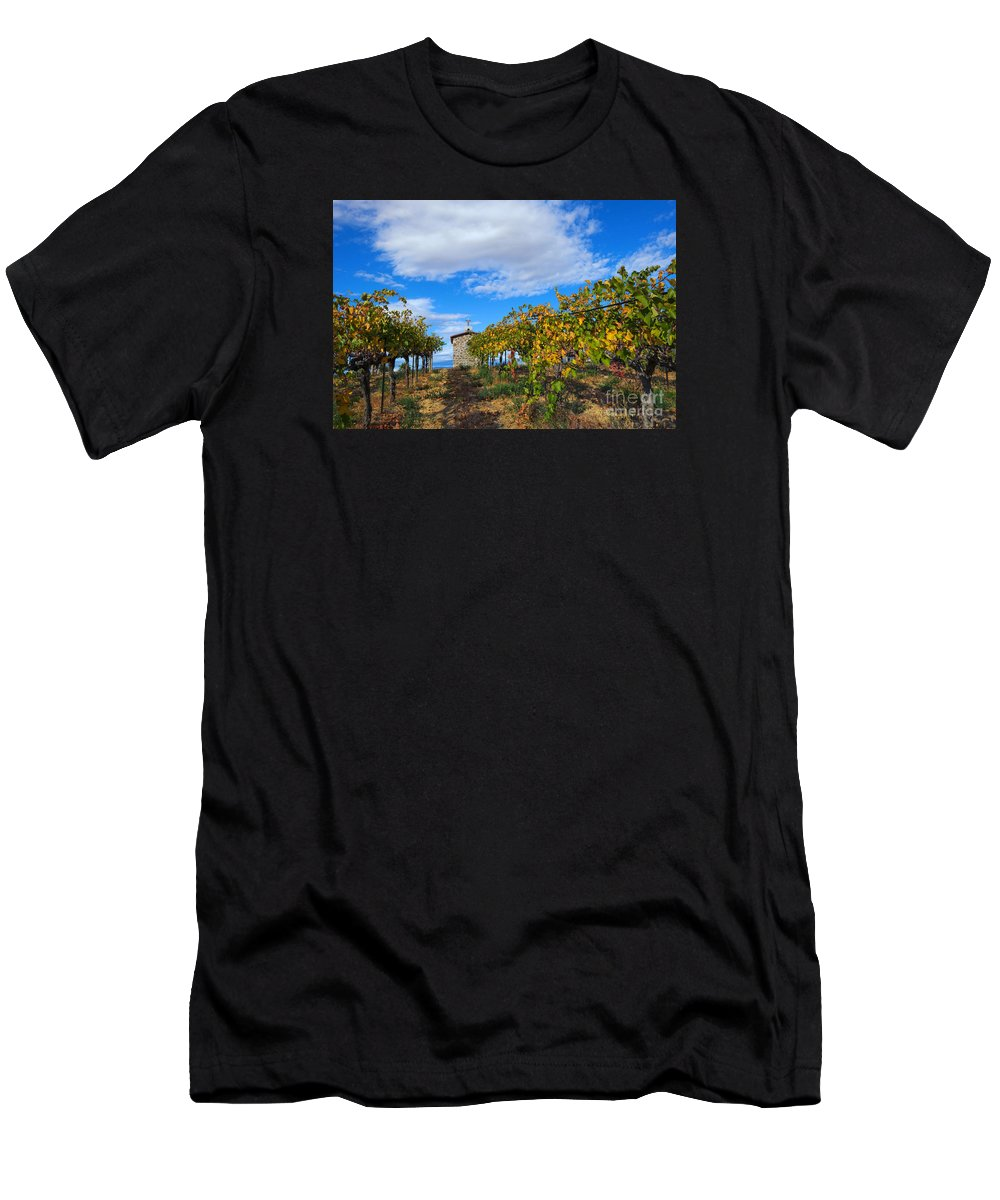 Chapel T-Shirt featuring the photograph Vineyard Temple by Mike Dawson