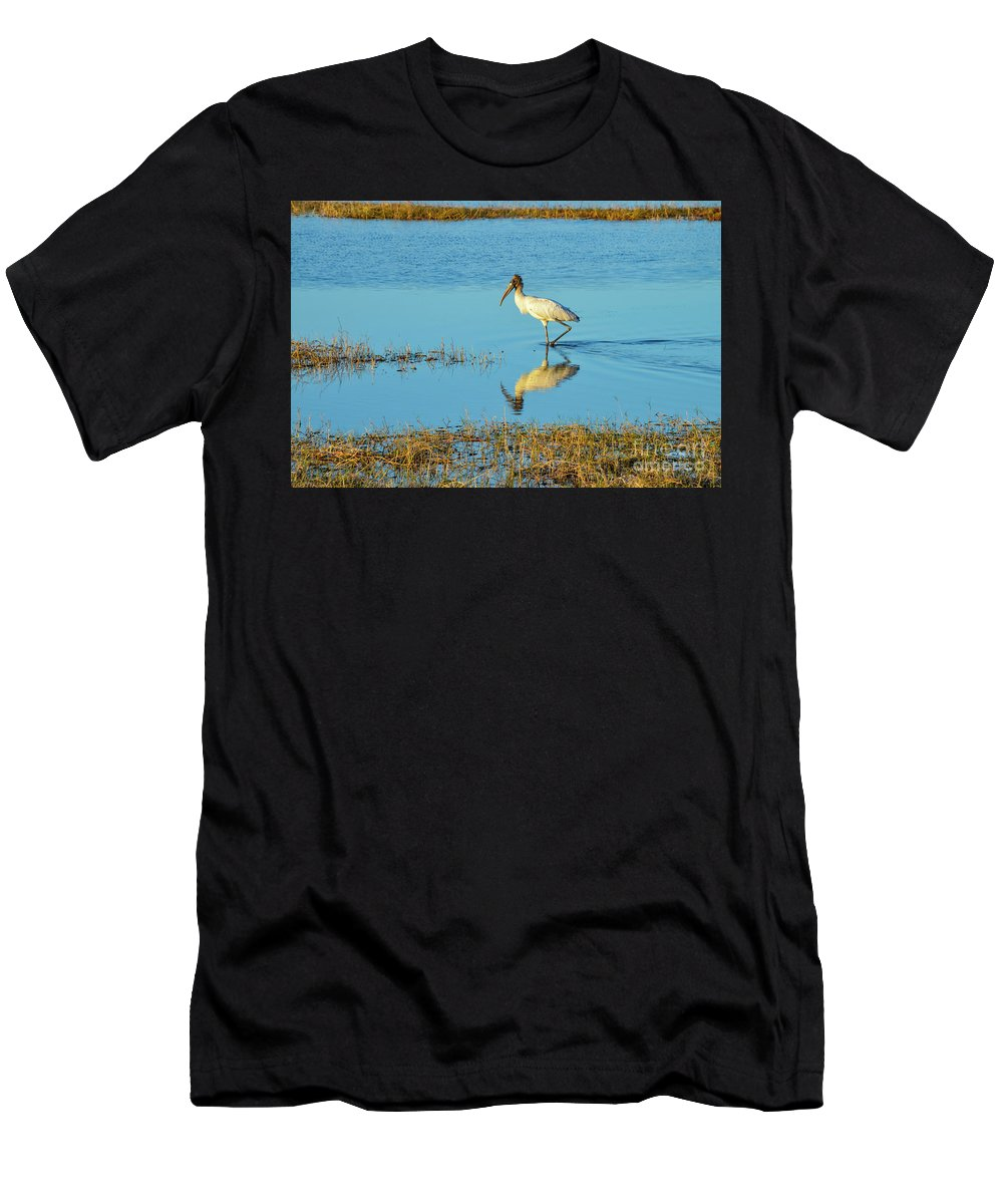 The Everglades Men's T-Shirt (Athletic Fit) featuring the photograph Wadding Wood Stork And Reflection by Bob Phillips