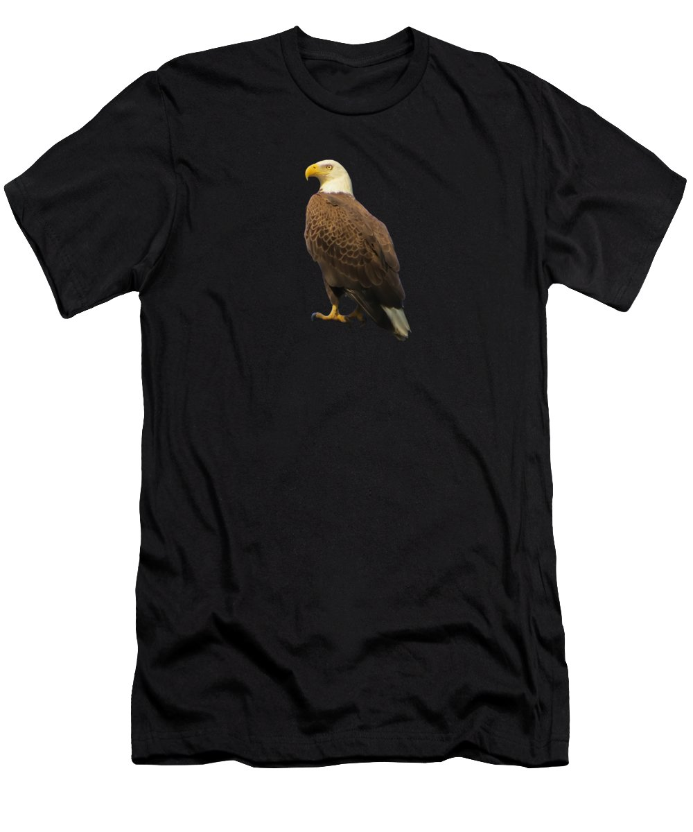 Bald Eagle Men's T-Shirt (Athletic Fit) featuring the photograph Waiting by Zina Stromberg