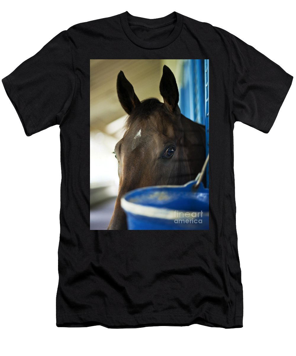 Race Horse In Stable. Men's T-Shirt (Athletic Fit) featuring the photograph Wary Racehorse by John Greim