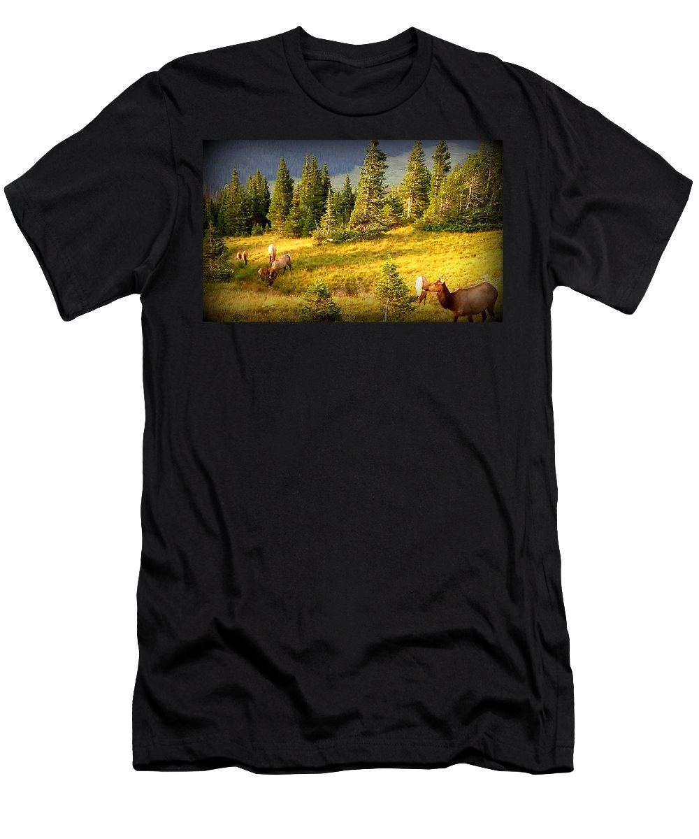 Blue Men's T-Shirt (Athletic Fit) featuring the photograph Watching Elk Iv by Lesli Sherwin