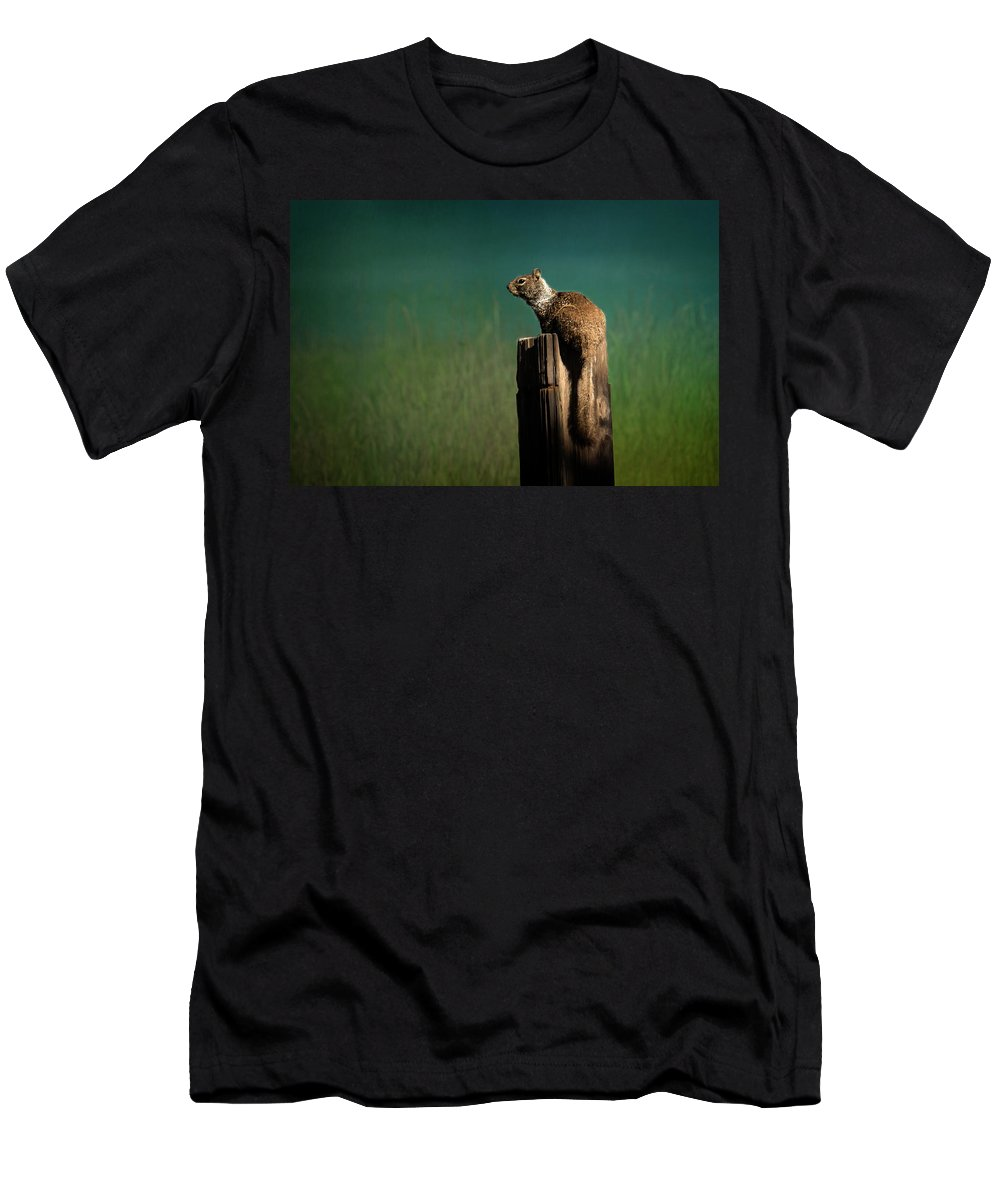 Ground Squirrel Men's T-Shirt (Athletic Fit) featuring the photograph Watching Out- 365-66 by Inge Riis McDonald