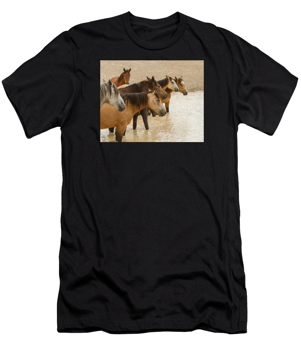 Wild Horse Men's T-Shirt (Athletic Fit) featuring the photograph Waterhole Band by Kent Keller
