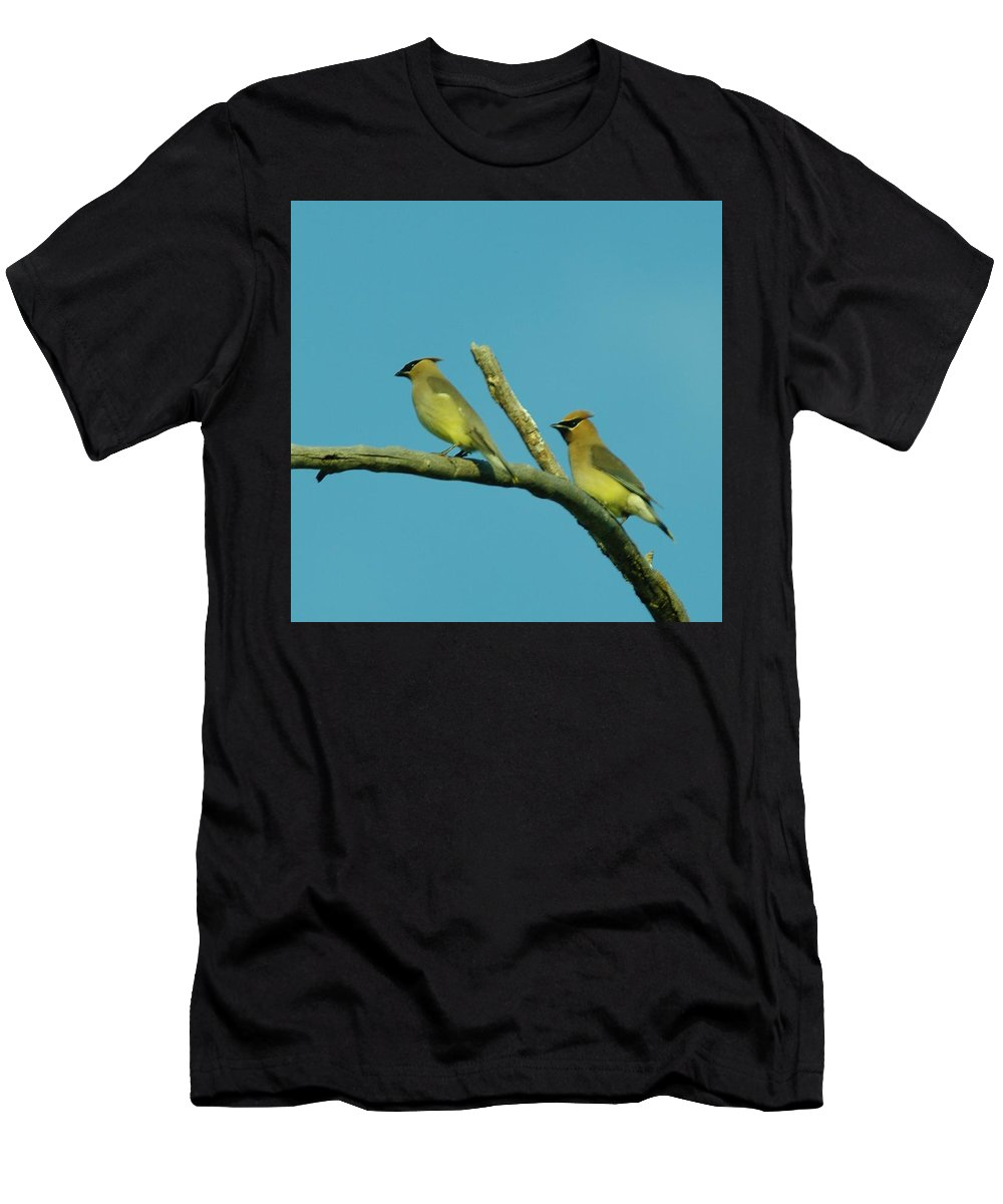 Birds Men's T-Shirt (Athletic Fit) featuring the photograph Wax Wings by Jeff Swan