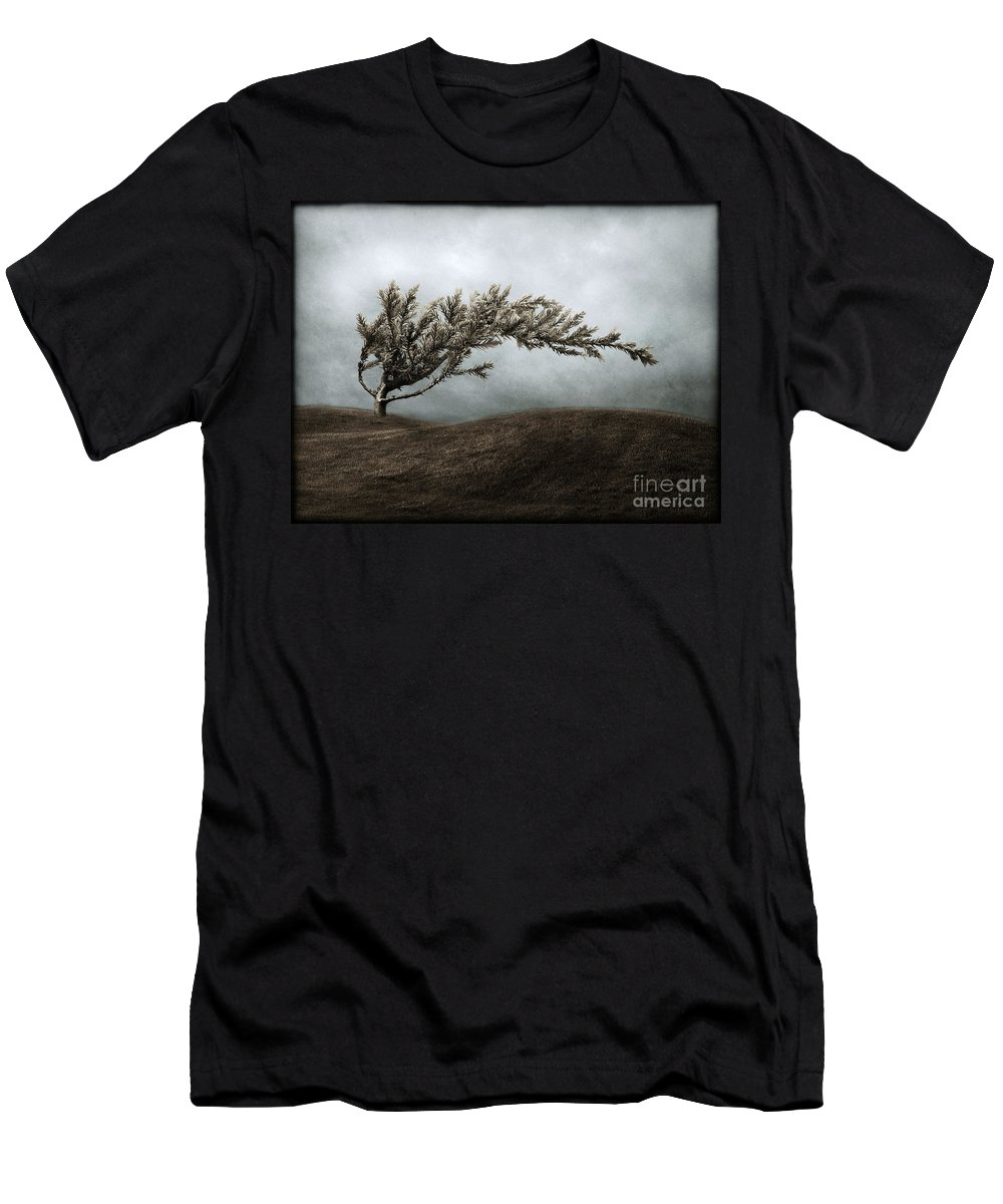 Bend Men's T-Shirt (Athletic Fit) featuring the photograph We Break And We Bend And We Turn Ourselves Inside Out by Dana DiPasquale