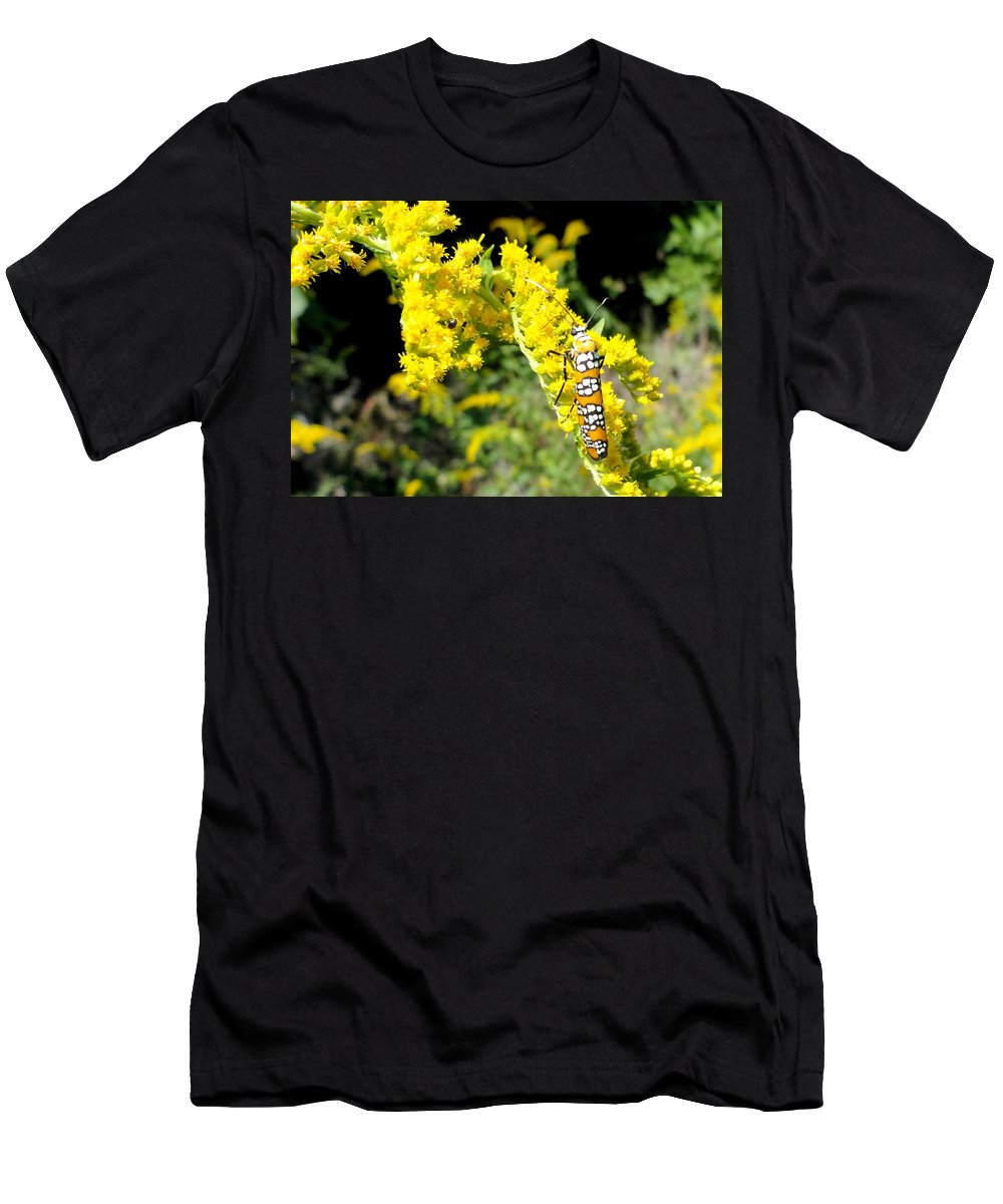 Moths Men's T-Shirt (Athletic Fit) featuring the photograph Webworm Moth by Trish Hale